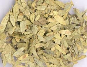 Cassia-Tora-folium