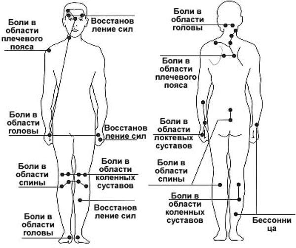 gryzha1
